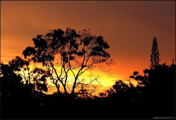 Romance at dusk - the original ...