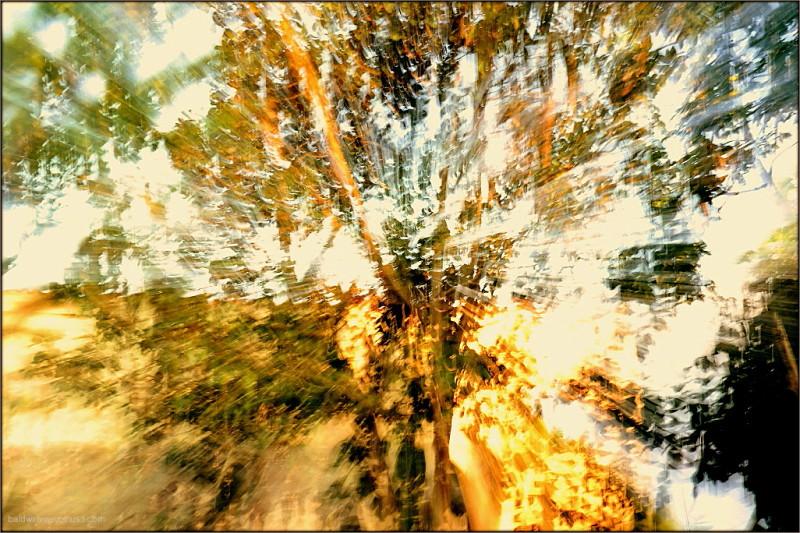 At light speed ...