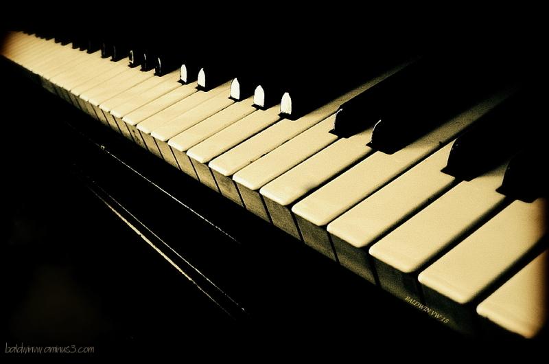 Sonata in D major ...