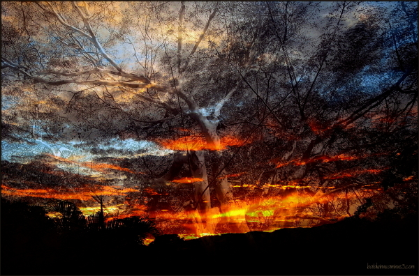 Fused in fire ...