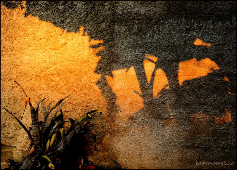 Shadows on the wall ...