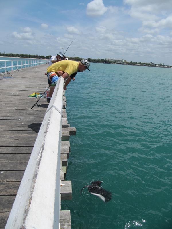 Fishing a ray