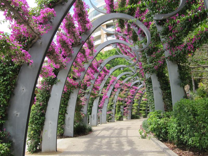 Flowers walk