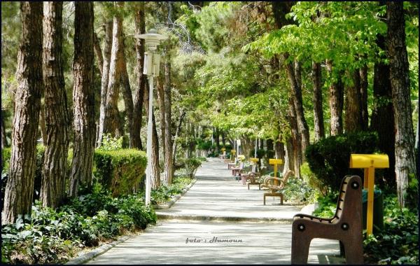 Saaei Park   Tehran Iran
