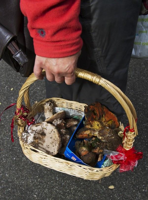 Pilzsammler mit Korb