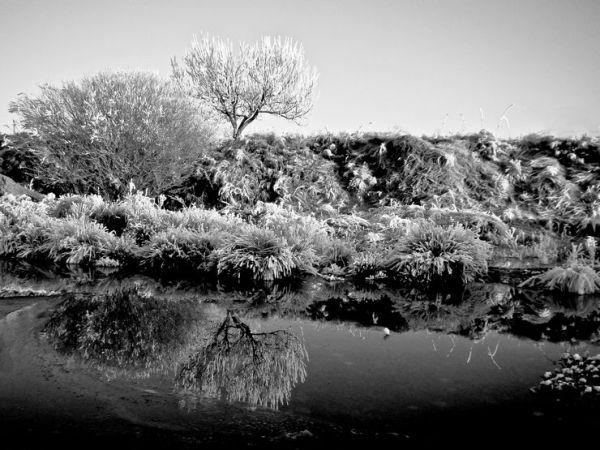 winter mirror ...