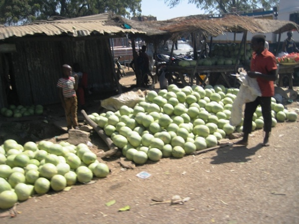 Water Melon on sale in Yauri Market