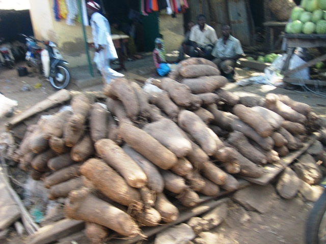 Yam on sale in Yauri Market