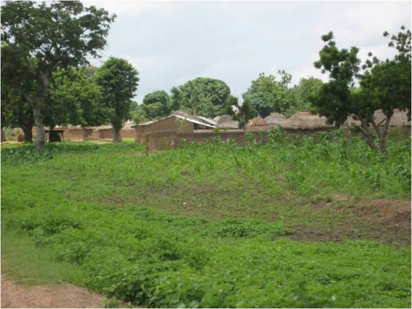 A settlement near Yelwa Yauri