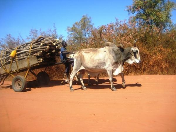 ON MY WAY TO NIGER REPUBLIC