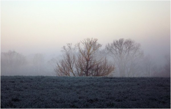 Cool frosty morning