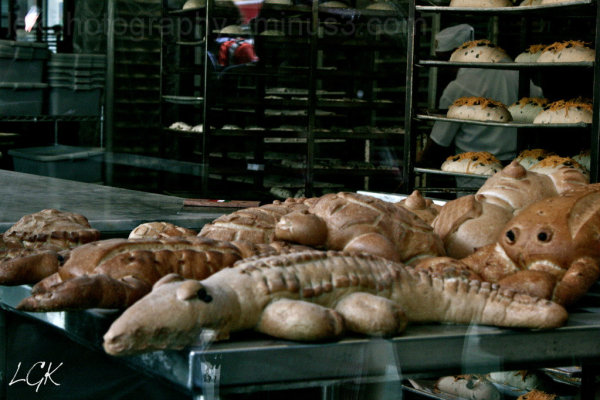 Animals in the Bakery