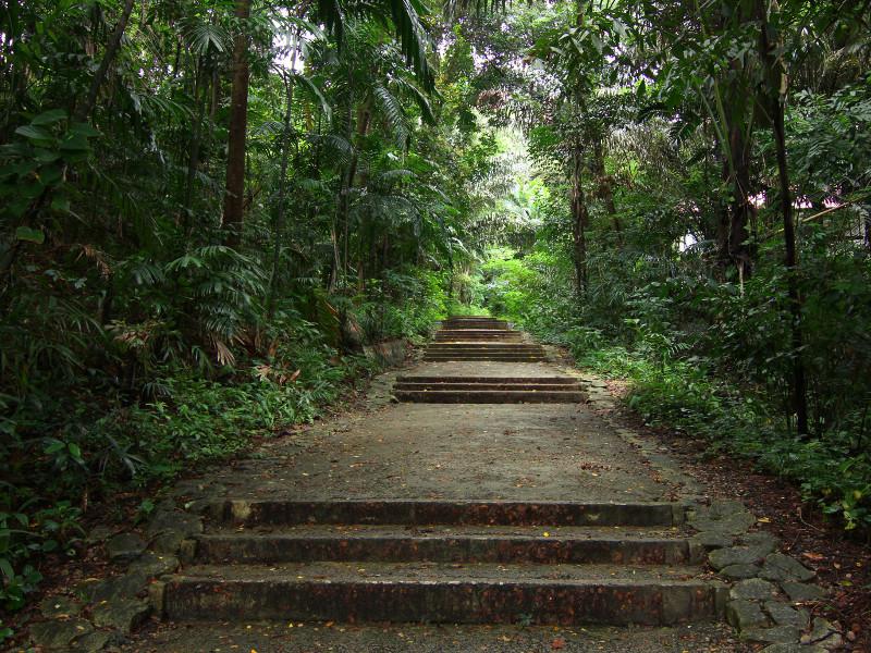 Marang Trail, Singapore