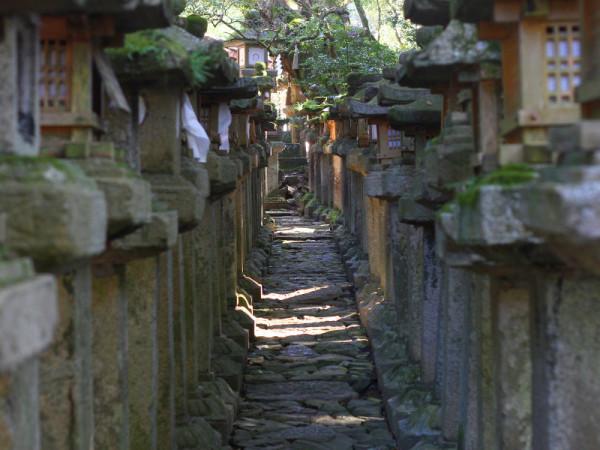 Kasuga Taisha Shrina, Nara, Japan