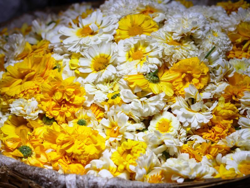 Dadar Flower Market, Dadar, Mumbai, India
