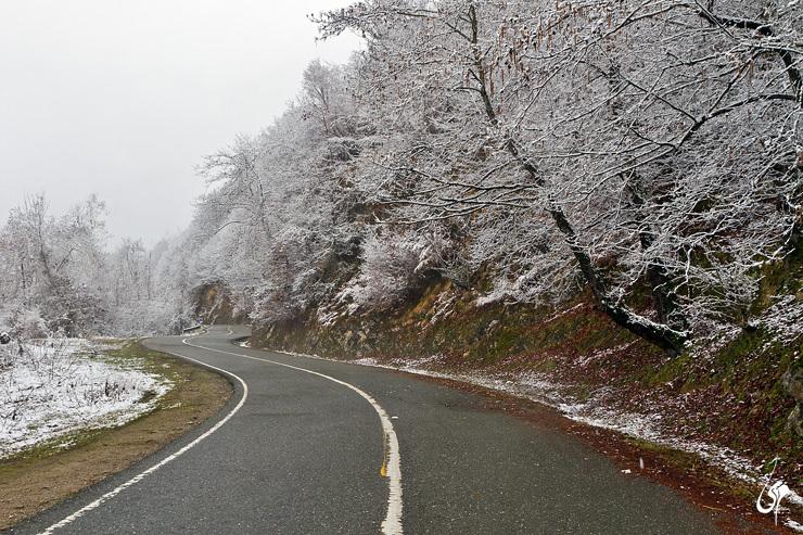 جاده دالیخانی