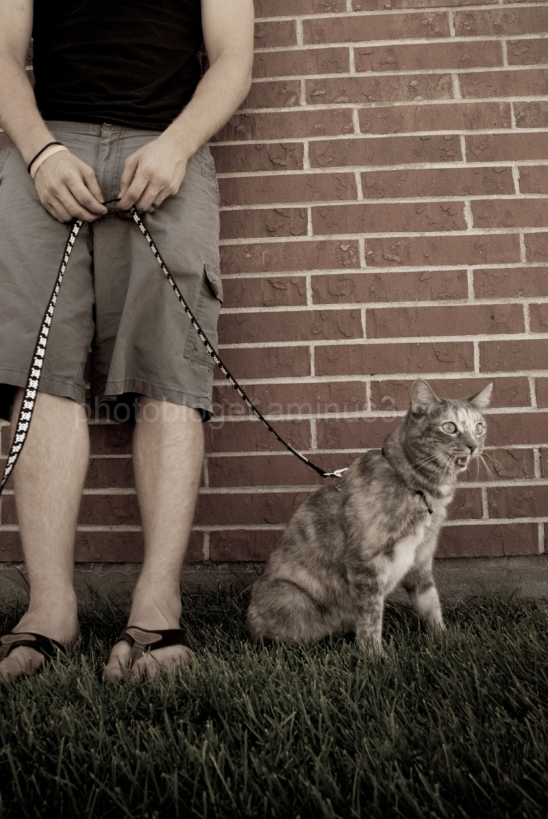man holding cat on leash in front of brick wall