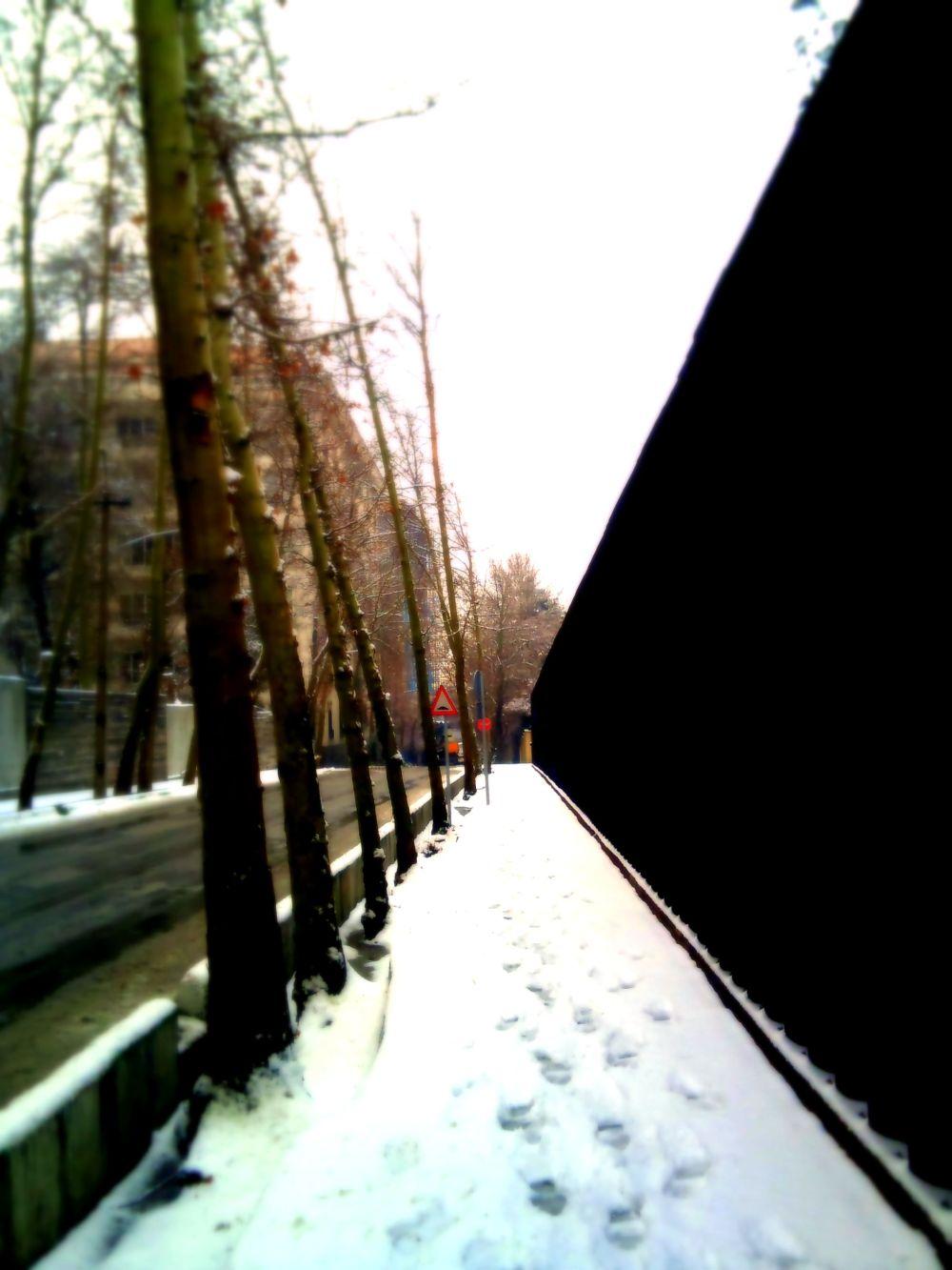 me & street & snow