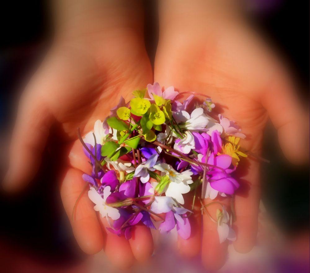 Spring in her hands