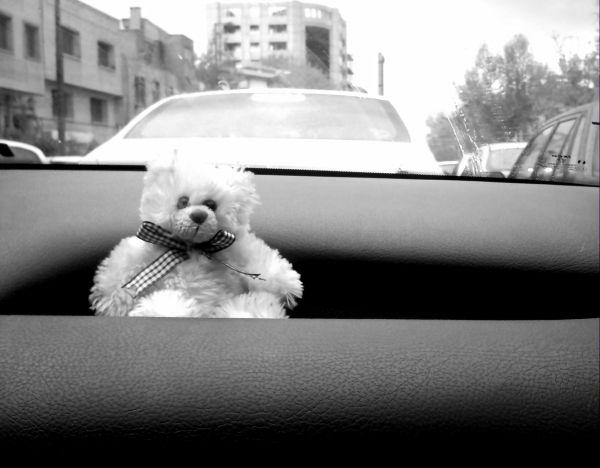 Bored of traffic