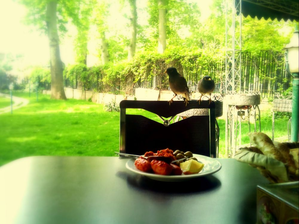 a great breakfast in a beautiful morning...