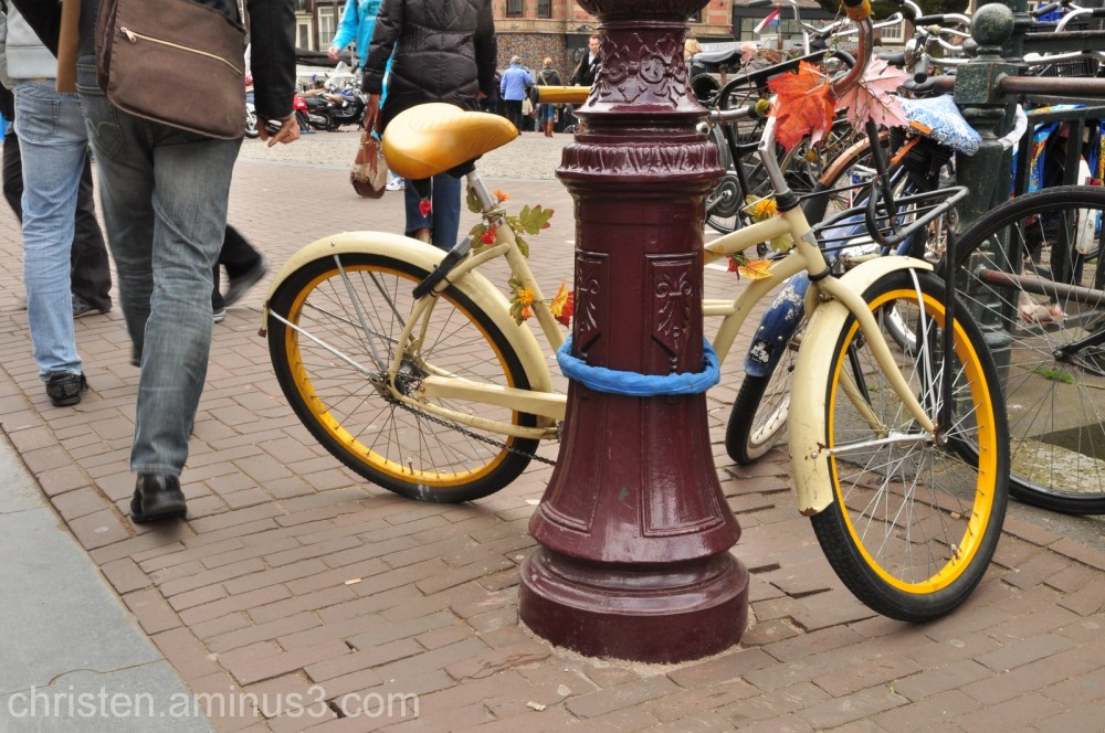a bicycle II