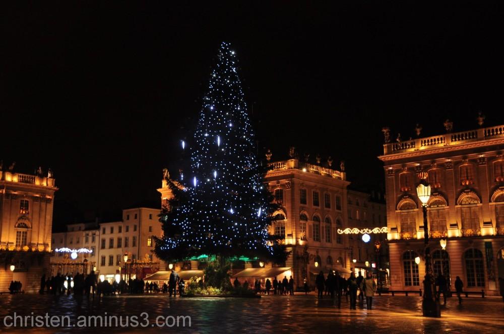 Stanislas' place and it's Christmas tree