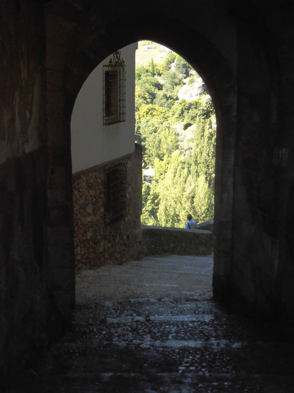 Another type of street in Cuenca. (2)