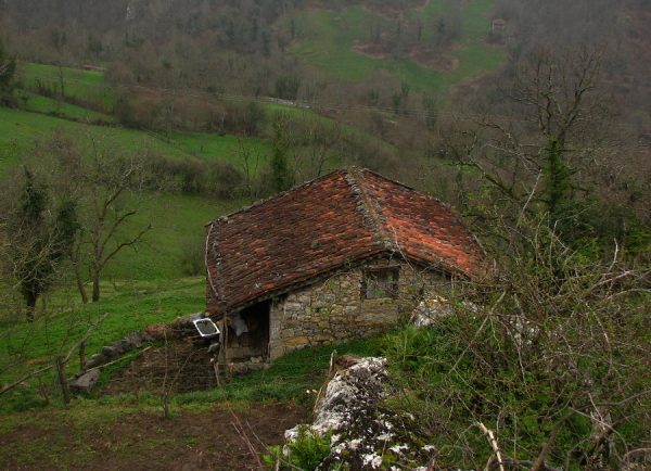 Up in one of the mountain of Asturias (North Spain