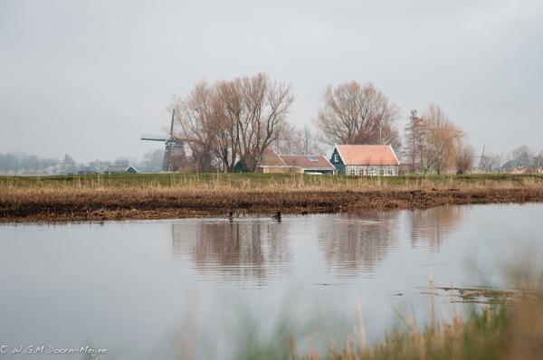polder, molen