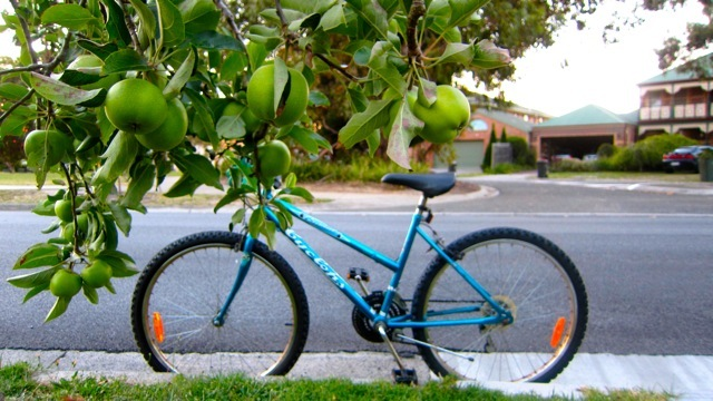 apple, bike