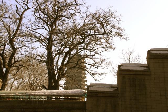 Gaoer Hill