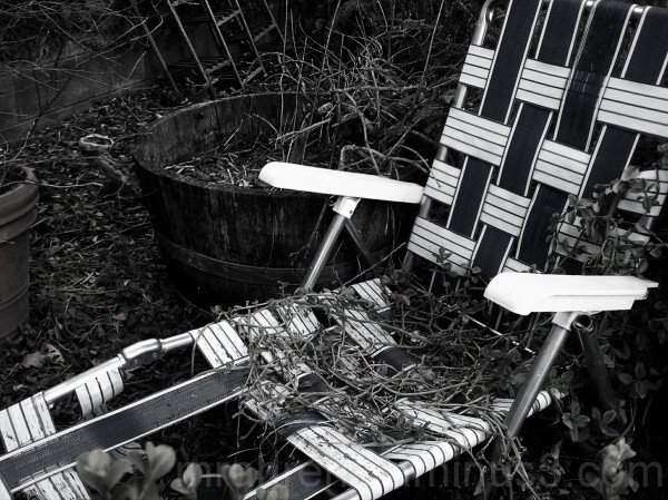 Neglected chaise lounge being taken back by nature