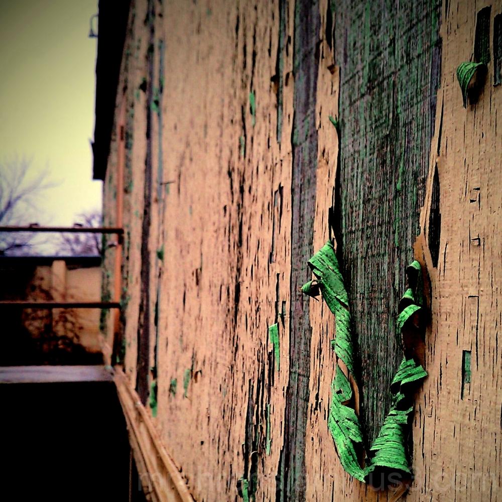Peeling paint on neglected Dewitt Hospital wall.