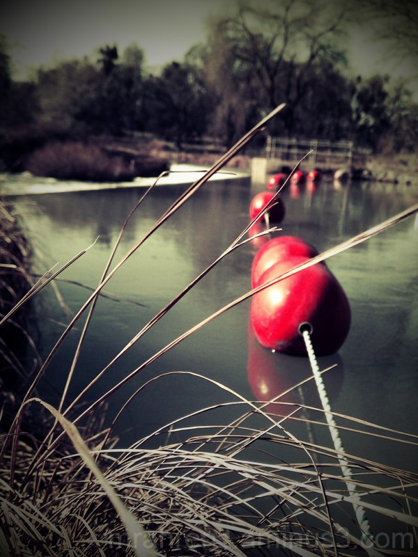 Buoys on Rock Creek
