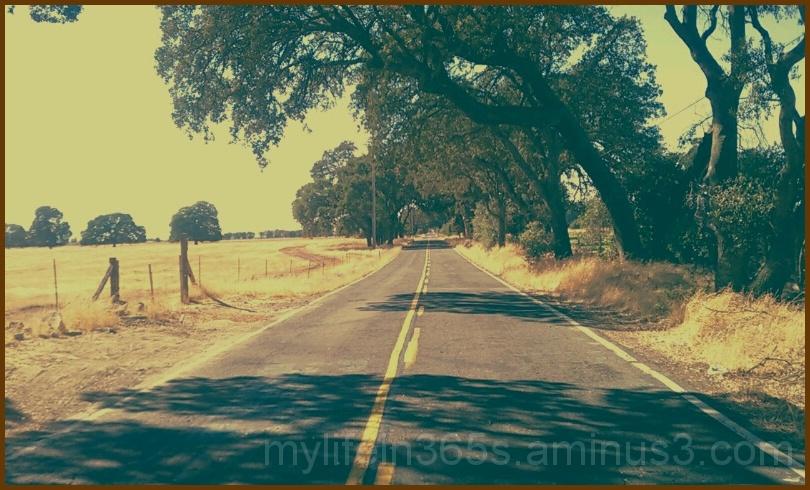 Retro Road