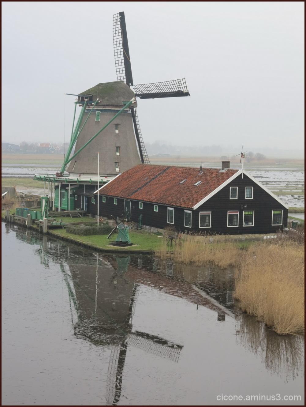 Winter in Zaandam/5