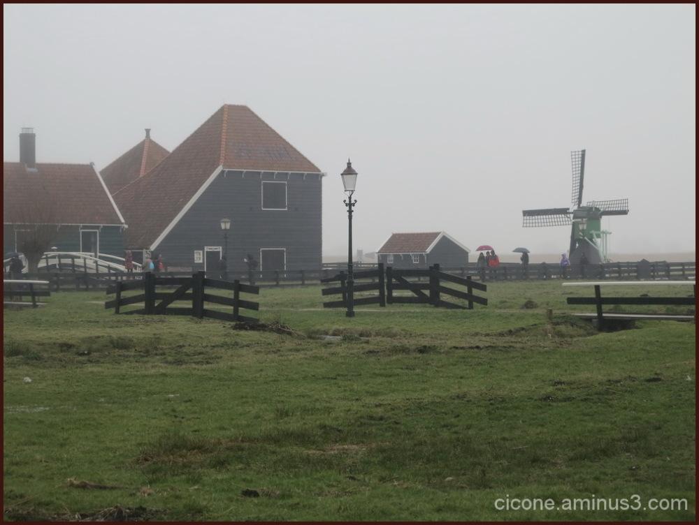 Winter in Zaandam/9