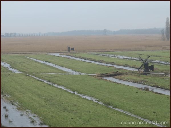 Winter in Zaandam/6