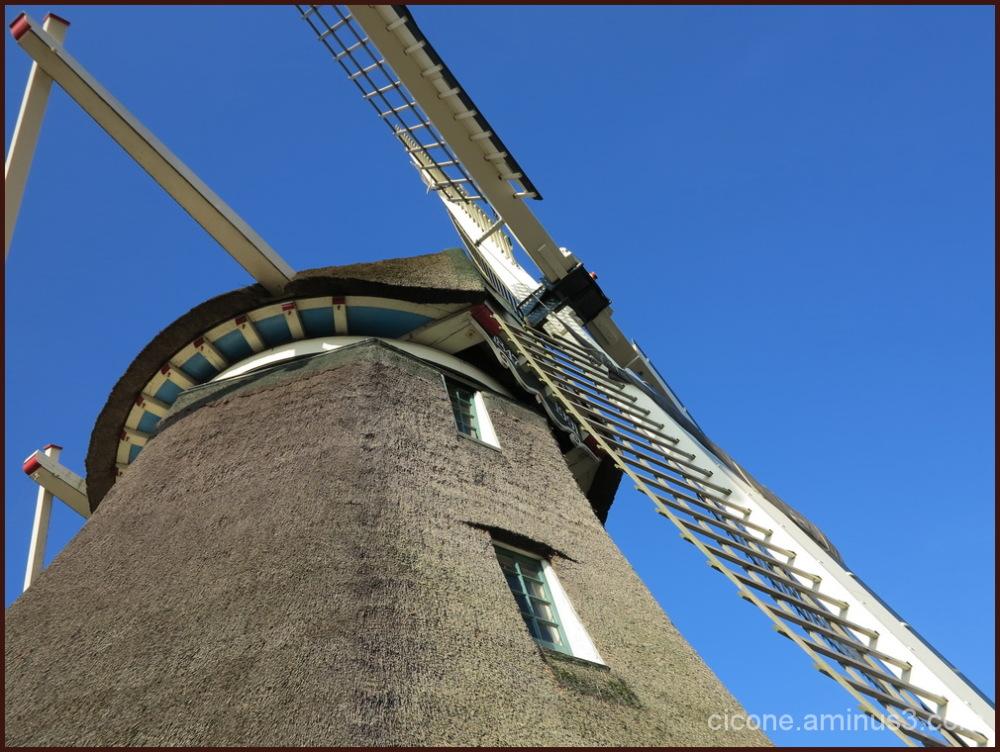 Molen van Sloten Amsterdam/5