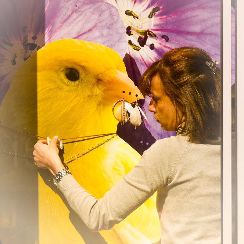 street photography, chick, yellow