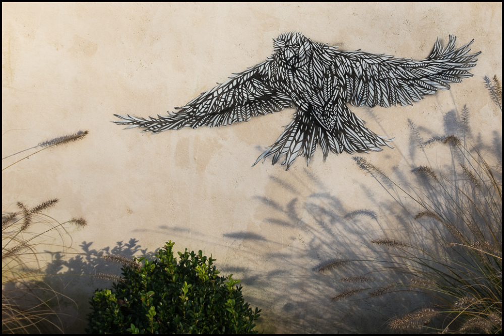 graffiti, bird