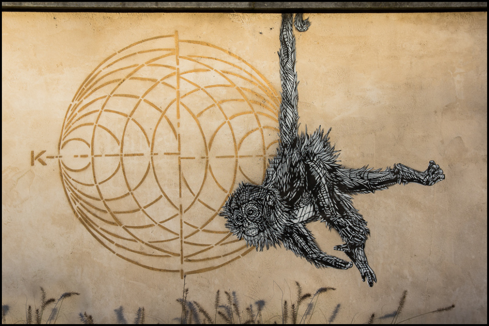 graffiti, monkey