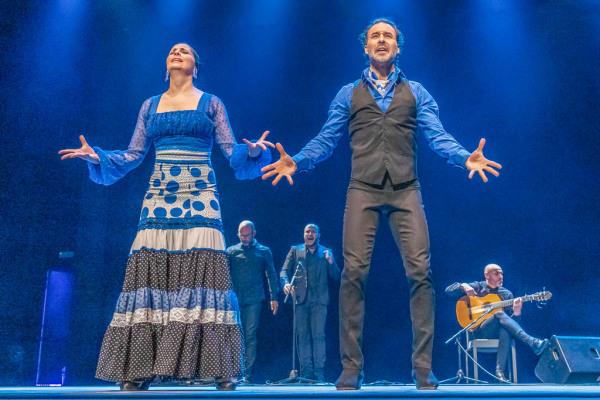 flamenco