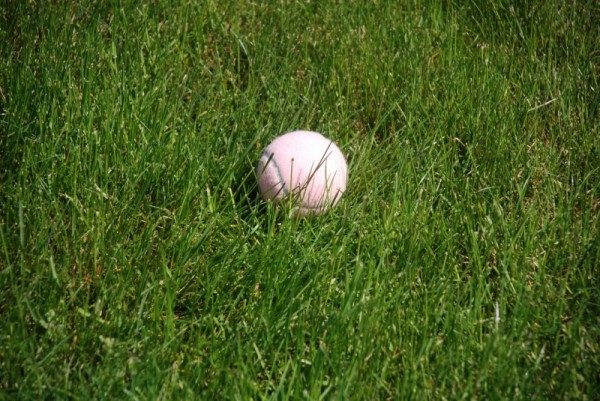 Pink on green