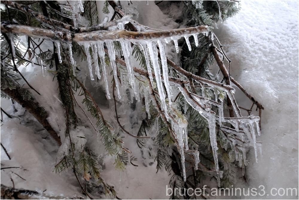 Winter still lingers