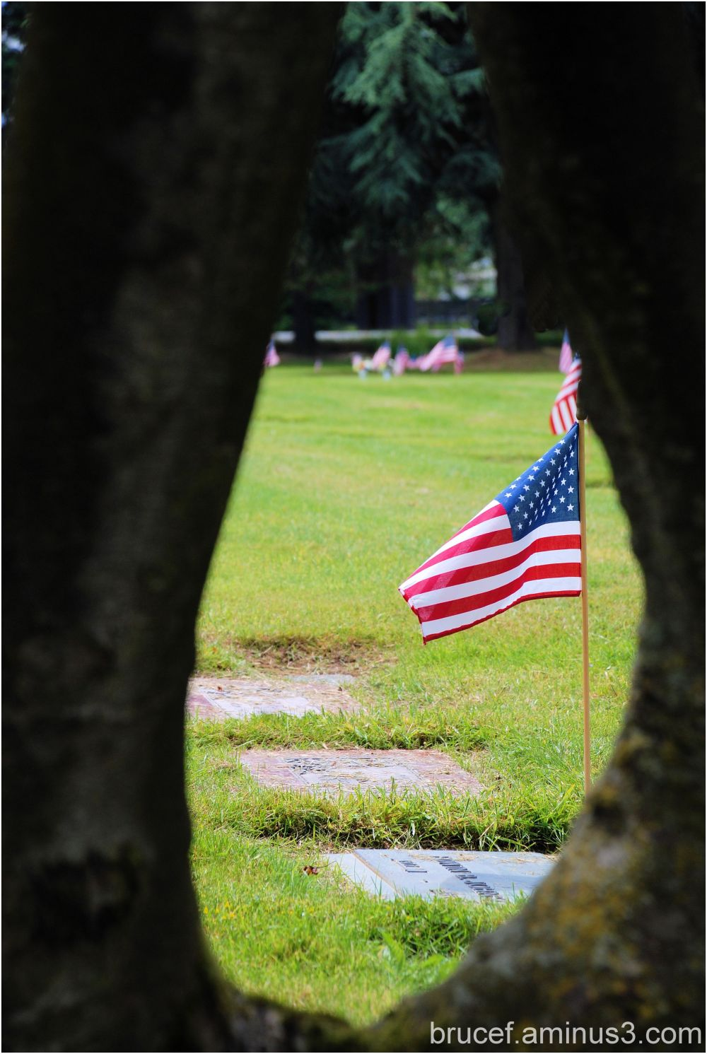 Memorial Day - honor to those who gave all