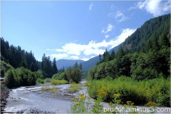 Valley on Mt Rainier