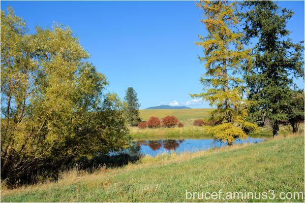 A pond on a farm in Idaho