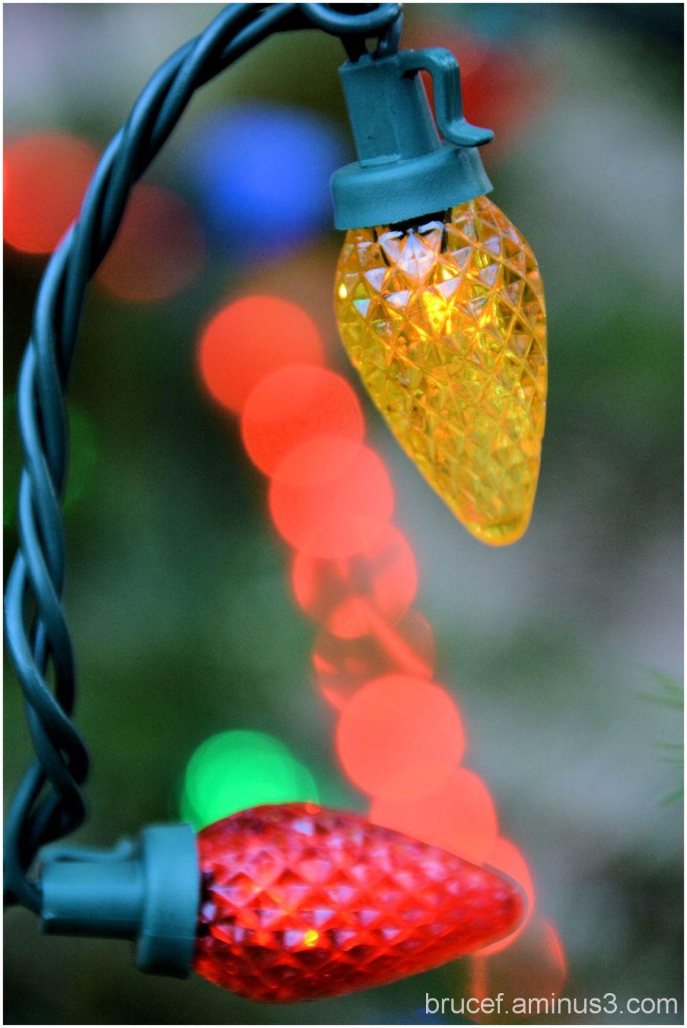 The lights of the Season